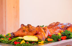 Barbequed Whole Pig at Wedding. Whole pig at a wedding reception with an apple in its mouth on a table stock images