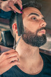 Barber beard cut a client's beard with clippers Stock Images