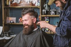 Barber with clipper trimming hair on nape of client. Barber with hair clipper works on haircut of bearded guy barbershop stock photos