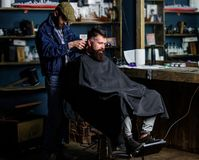 Barber with clipper trimming hair on nape of client. Hipster client getting haircut. Hipster style concept. Barber with. Hair clipper works on haircut of royalty free stock image