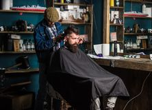 Barber with clipper trimming hair on nape of client. Hipster style concept. Hipster client getting haircut. Barber with. Hair clipper works on haircut of royalty free stock image
