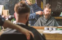Barber with clipper trimming hair on nape of client. Reflexion of barber with hair clipper works on haircut of guy. Barbershop background. Hipster hairstyle royalty free stock photos