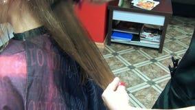 Barber cut hair client stock video