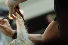 Barber cutting hair Royalty Free Stock Photos