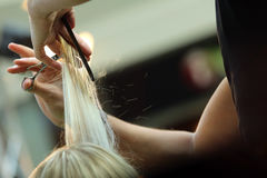 Barber cutting hair Stock Photography
