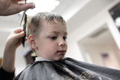 Barber cutting hair of a kid Stock Image