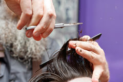 Barber cutting and modeling hair by scissors Stock Photo