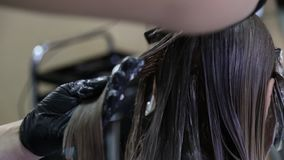 Barber Dyeing Coloring Hair Woman Girl, Grooming Hair Care. Barber dyeing coloring hair woman girl side view macro close-up hands combing comb grooming haircare stock video