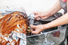 Barber girl washing her hair a client Royalty Free Stock Photo