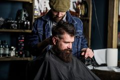 Barber with hair clipper works on haircut of bearded guy barbershop background. Hipster hairstyle concept. Barber with. Clipper trimming hair on nape of client royalty free stock photo