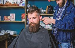 Barber with hair clipper works on hairstyle for bearded guy barbershop background. Hipster client getting haircut. Hipster lifestyle concept. Barber with stock image