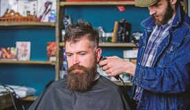 Barber with hair clipper works on hairstyle for bearded guy barbershop background. Hipster lifestyle concept. Barber. With clipper trimming hair on nape of stock images