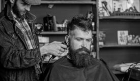 Barber with hair clipper works on hairstyle for bearded guy barbershop background. Hipster lifestyle concept. Barber. With clipper trimming hair on nape of stock image