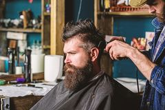 Barber with hair clipper works on hairstyle for man with beard, barbershop background. Barber styling hair of bearded. Barber with hair clipper works on royalty free stock images