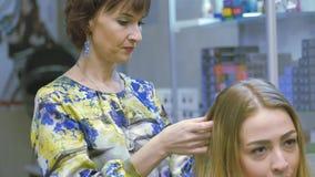 Barber, hair dye, blonde sitting in the beauty salon. Hairdresser dye the hair. stock video