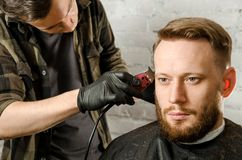 Barber hand in gloves cut hair and shaves adult gihger bearded man on a brick wall background. Close up portrait of a guy. Barber hand in gloves cut hair and royalty free stock photography