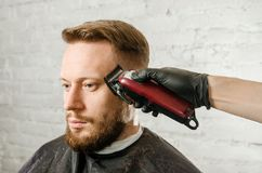 Barber hand in gloves cut hair and shaves adult gihger bearded man on a brick wall background. Close up portrait of a guy. Barber hand in gloves cut hair and royalty free stock image