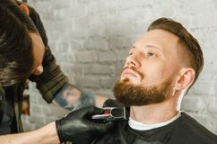 Barber hand in gloves cut hair and shaves adult gihger bearded man on a brick wall background. Close up portrait of a guy. Barber hand in gloves cut hair and royalty free stock photo