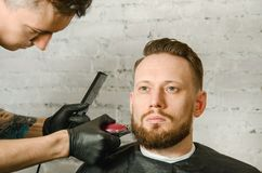 Barber hand in gloves cut hair and shaves adult gihger bearded man on a brick wall background. Close up portrait of a guy. Barber hand in gloves cut hair and stock image