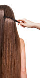 Barber's hand combing her long straight hair isolated . royalty free stock image