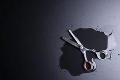 Barber Scissors profesional elegante, corte del pelo en la parte posterior del negro Fotos de archivo libres de regalías