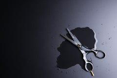Barber Scissors profesional elegante, corte del pelo en la parte posterior del negro Fotografía de archivo libre de regalías