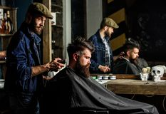 Barber styling hair of brutal bearded client with clipper. Barber with hair clipper works on hairstyle for bearded man. Barber styling hair of brutal bearded royalty free stock images
