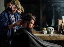 Barber styling hair of brutal bearded client with clipper. Hipster lifestyle concept. Hipster client getting haircut. Barber with hair clipper works on royalty free stock photography