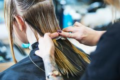 Barber or stylist at work. Hairdresser cutting woman hair. Barber or hair stylist at work. Female hairdresser cutting hair of women client with scissors royalty free stock images