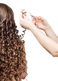 Barber trims tresses girl with long curly hair isolated on white . stock image