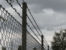 Barber wire fence. Barbed wire fence perspective useful as jail or lack of freedom concept Stock Photos