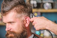 Barber works with hair clipper. Barbershop concept. Hands of barber with hair clipper, close up. Hipster bearded client. Getting hairstyle. Man with beard in royalty free stock image