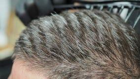 Barberaren kammar gråa äldre klienter för kort hår lager videofilmer