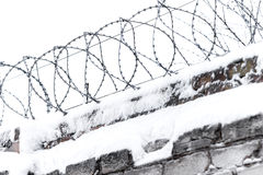 Barbered wire on boundary Royalty Free Stock Image