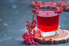 Barberry and barberry juice royalty free stock photography