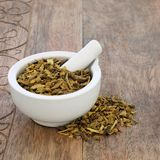 Barberry Bark Herb. Herbal medicine used to treat disorders of the liver, gall bladder, urinary tract, kidney, heart and circulatory system. In a mortar with Royalty Free Stock Photos