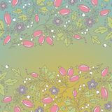 Barberry border, hand-drawn berry pattern. Stock Images