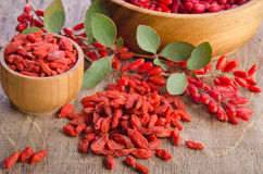 Barberry and dry goji berries Stock Images