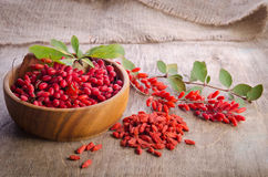 Barberry with leaves and dry goji berries Royalty Free Stock Image