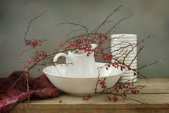 Barberry Royalty Free Stock Photo