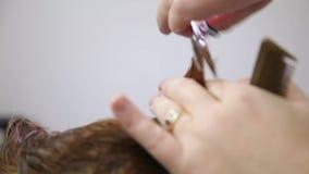 Barbers Cutting Womans hår arkivfilmer