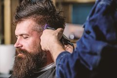 Barbershop concept. Hands of barber with hair clipper, close up. Hipster bearded client getting hairstyle. Barber works. With hair clipper. Man with beard in stock image