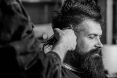 Barbershop concept. Hands of barber with hair clipper, close up. Hipster bearded client getting hairstyle. Barber works. With hair clipper. Man with beard in royalty free stock photography