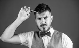 Barbershop service concept. Businessman strict face hold scissors. Barber with beard and mustache hold steel scissors royalty free stock photography