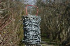 Barbeta drutu rolka z naturalnym tłem Zdjęcie Royalty Free