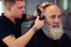 Barbiere con il tatuaggio che fa taglio di capelli all'uomo senior dei pantaloni a vita bassa bei immagine stock