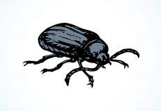 Barbo do besouro Desenho do vetor ilustração stock