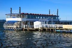 Barbotez le rouleur sur le lac avec le troupeau des canards images libres de droits