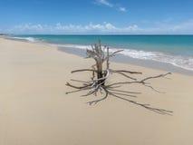 Barbuda 17 Meilen Long Beach Stockfoto