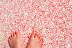 Barbuda pink sand beach. Little girl feet on pink sand beach at Barbuda island in Caribbean made of tiny pink shells, close up photo Royalty Free Stock Photos